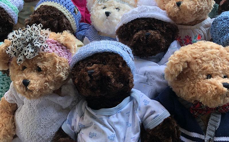 ds-_0010_teddy-bears